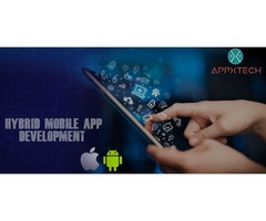 Hybrid App Based Development Services