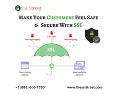 Secure Your Website and Data With An SSL Certificate