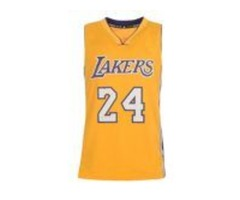 Alanic Clothing Is A Popular Supplier Of Basketball Apparel Worth The Bulk Investment