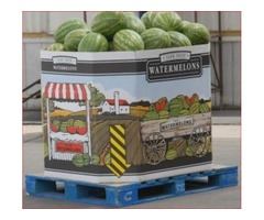 Strong Watermelon Bins