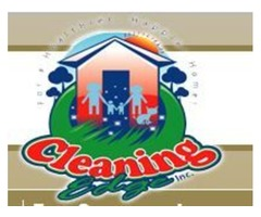 Importance of pet odor and stain removal