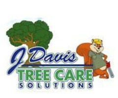Factors to consider while choosing Tree Care Services in Fort Worth TX