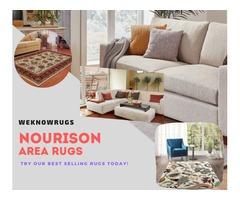 Nourison Area Rugs for Sale | free-classifieds-usa.com