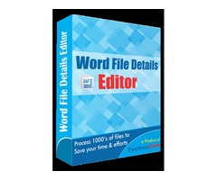 Word File Details Editor