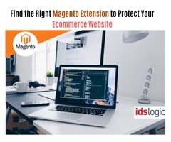 Find the Right Magento Extension to Protect Your Ecommerce Website