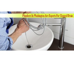 Plumbers In Washington Are Experts For Clogged Drain