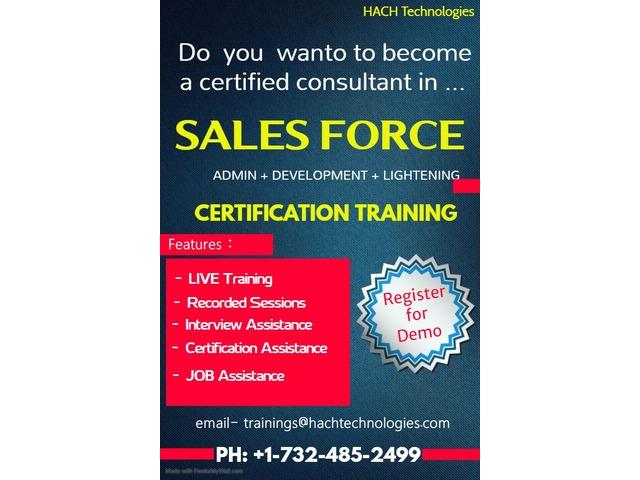Salesforce Online training | free-classifieds-usa.com