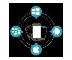 Cross-Platform Mobile App Development for Business