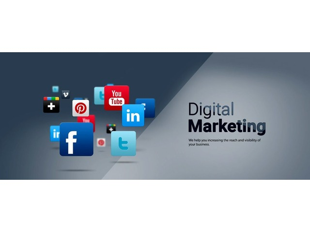Professional Digital Marketing & SEO Services   | free-classifieds-usa.com