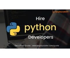 Want to Hire Python Developers for your Project? Contact Us