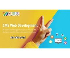 CMS application development Service