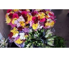 Wholesale Flowers for Weddings | free-classifieds-usa.com
