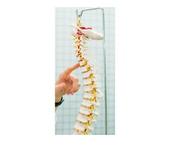 Coral Springs Pediatric Chiropractic Services
