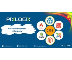 Custom CMS Web Development Services Company