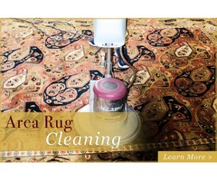 Choose the Right Commercial Carpet Cleaner