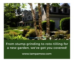 Landscaping Company In Tampa | Landscaping Florida | Tampa Mow