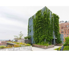 Green wall interior – enhances the look several notches higher
