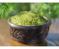 Is Moringa Powder Is Important For Your Health?