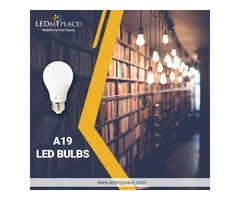 Buy Cheap and Best A19 LED Light Bulbs on Discount Now