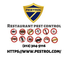 Solution for Restaurant Pest Control?