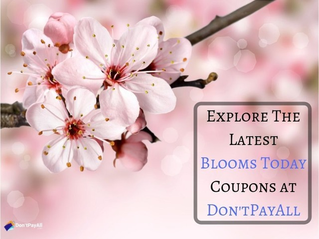 Blooms Today coupon: For reasonable flowers and gifts | free-classifieds-usa.com