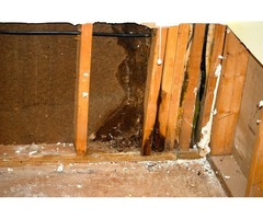 Water Damage Restoration Service in Greenville, SC