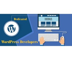 Hire Dedicated Programmer,Hire Dedicated Laravel developer,Hire PHP developer