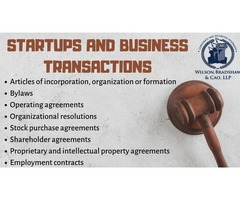 Startups and Business Transactions