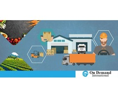 Open a Company in Agriculture in the heart of Europe - The Netherlands