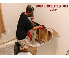 Top and Best Mold Remediation Services in Fort Myers | ServiceMaster Restorations