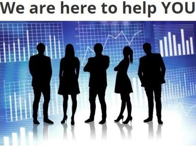 TaylorLyfe Digital Marketing | free-classifieds-usa.com
