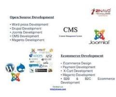 CMS Website Design and Development Services In Dallas