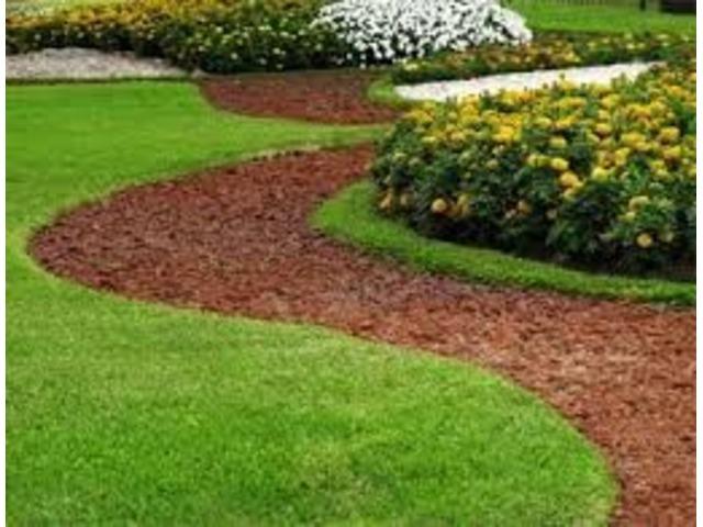 Landscaping Service Ocala Florida Usa Lawn Garden Ocala