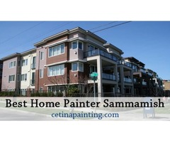 Best Home Painter Sammamish