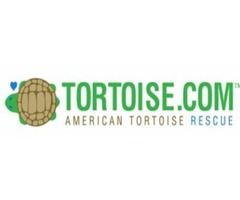 Tortoise and Turtle Rescue