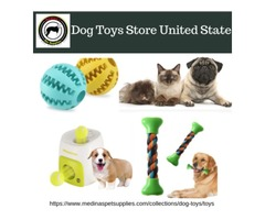 Dog Toys Store United State