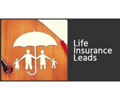 Are you looking For the Best life insurance leads Service in Honolulu?
