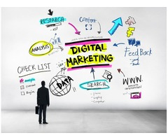 Get your digital marketing from the palmetto soft's marketing personnel