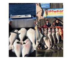 Homer Halibut Charters Alaska Ocean Pro