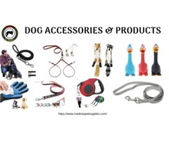 Dog Accessories & Products