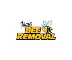 Honey Bee Rescuer in Carmel Valley CA