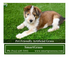 Artificial turf installation company in USA