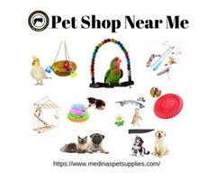 Pet Shop Near Me