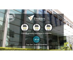 Business Analytics Services and Solutions Company - Tredence