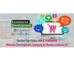 Envisioned Overall Look and Feel of Website Designing Phase
