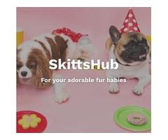 SkittsHub Pet Supplies