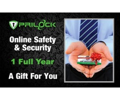 Top Rated Online Security For Nonprofit Leader - Prilock