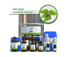 Buy Now! Pure Lemon Balm Essential Oil from Wholesale Suppliers