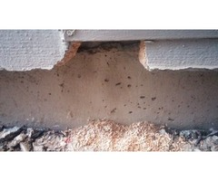Done Right Rodent Proofing San Anselmo CA