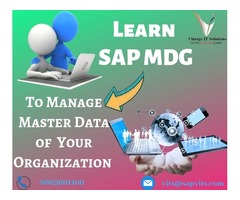 SAP MDG Online Training in USA | Best SAP MDG Courses in USA